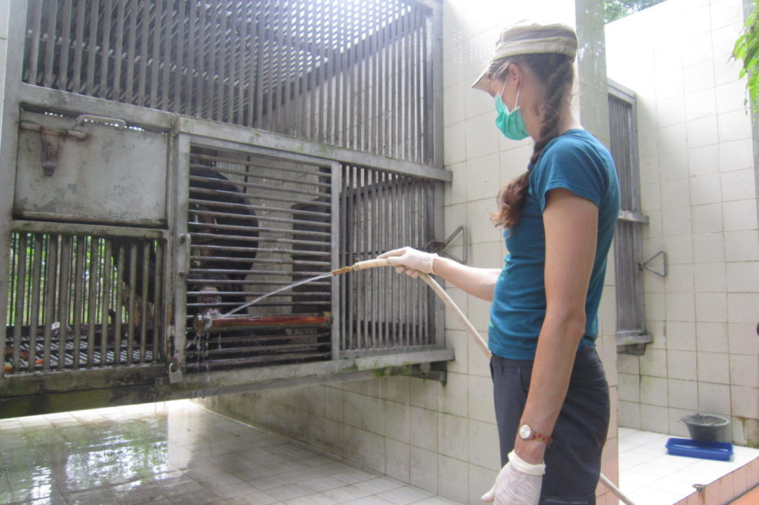 JAVA WILDLIFE RESCUE, YOGJAKARTA, INDONESIA