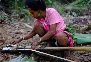 Amazing bush skills of Bateq women