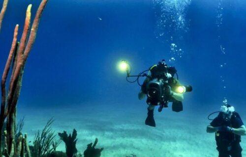 divers-scuba-reef-underwater-37542