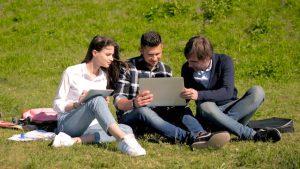 Conservation Marketing Study Internship