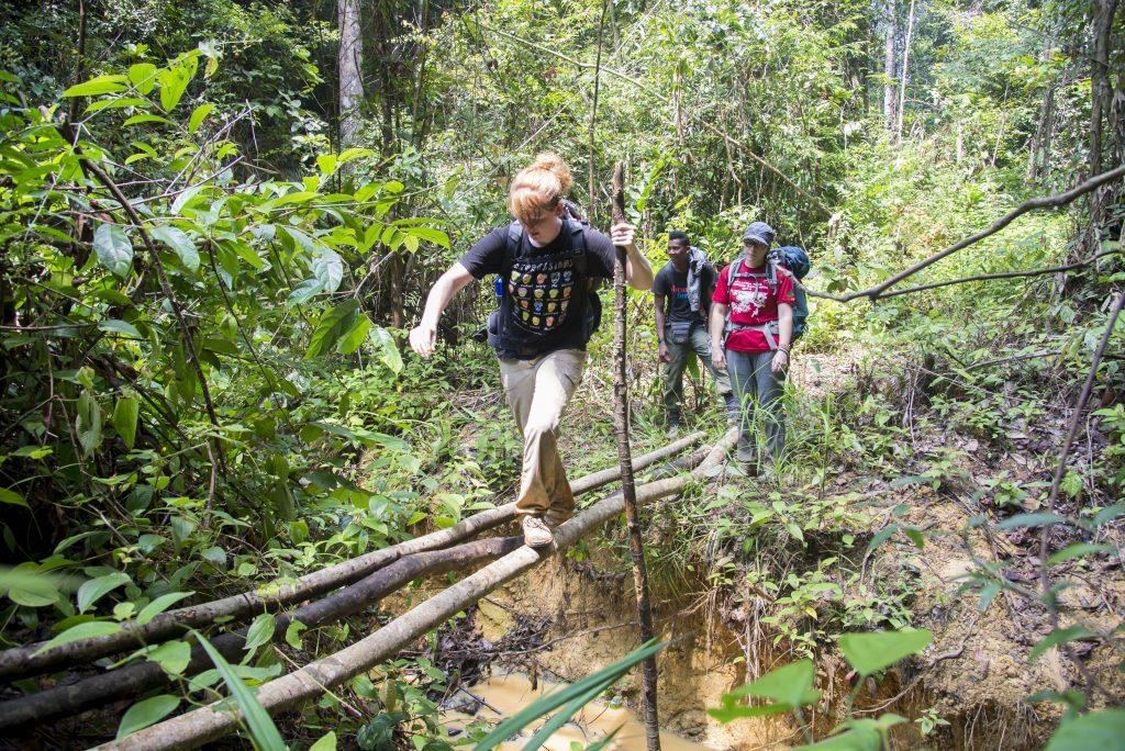 Rainforest conservation experience