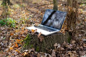 Conservation Marketing Internship