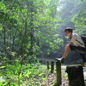 The  'Rainforest Volunteer Coordinator' Internship Is Back!