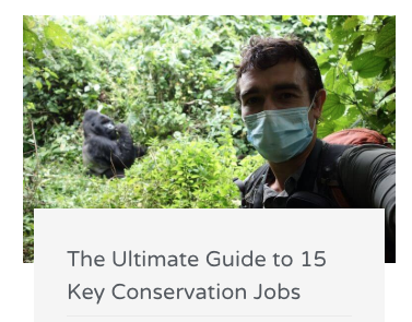 long-term conservation career