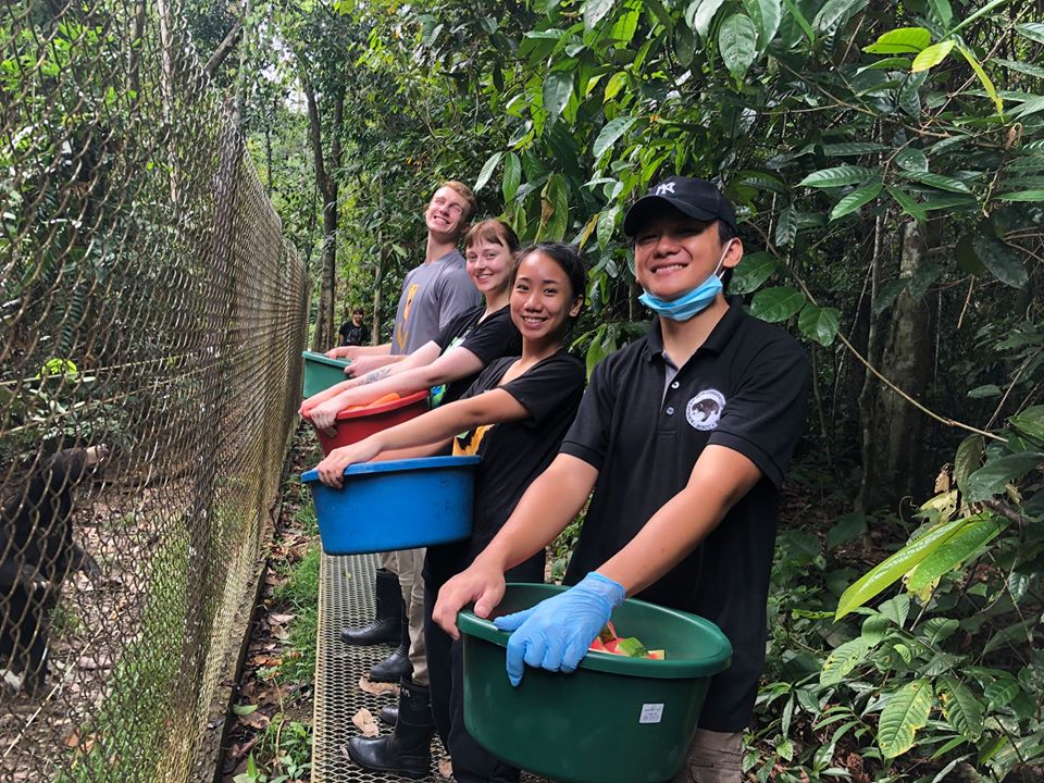 Personal Experiences Of A Sun Bear Volunteer In Sepilok, Borneo
