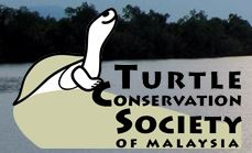 conserving Malaysia's turtles